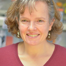 Professional Headshot of Cecilia B. Moens