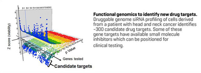 Functional genomics to identify new drug targets