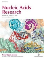 Recognition of a common rDNA target site by analogous archael LAGLIDADG and eukaryal His-Cys box homing endonucleases isoschizomers, Nucleic Acids Research