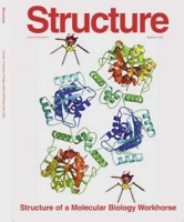 Structure of a tRNA repair enzyme and molecular biology workhorse, T4 polynucleotide kinase, Structure